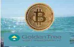 45 Milyar Dolarlık Varlık Yöneticisi GoldenTree'nin Bitcoin Satın Aldığı Bildirildi