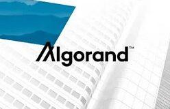 Algorand Vakfı, DeFi İnovasyonu için 300 Milyon Dolarlık Bir Fon Başlattı: ALGO, 2 Yılın En Yüksek Seviyesine Ulaştı